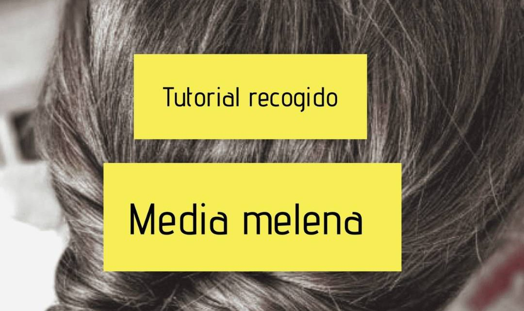Tutorial recogido sencillo- Media melena
