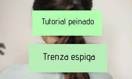 Tutorial peinado trenza espiga