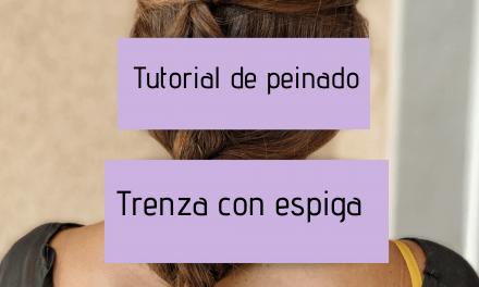 tutorial de peinado trenza con espiga